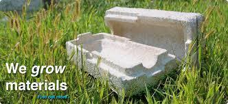 mushroom materials