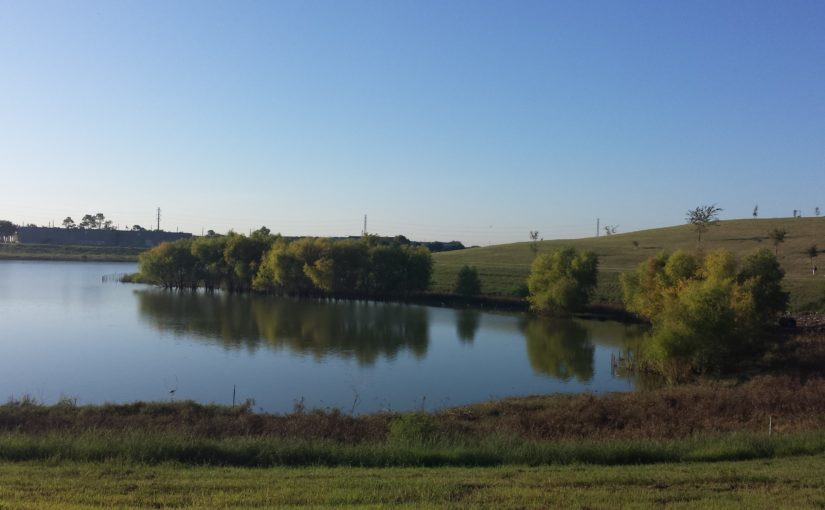 Fiorenza Park: Eagles, Reflections, Goals, and Pipe Dreams
